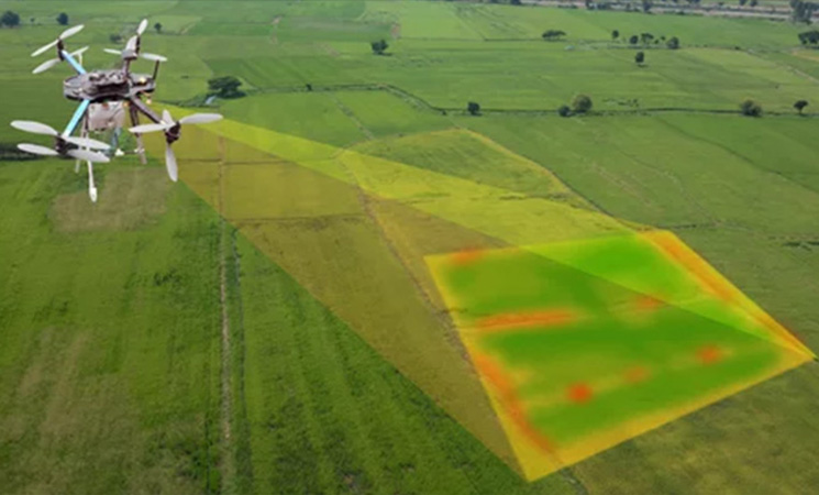 agriculture survey 1